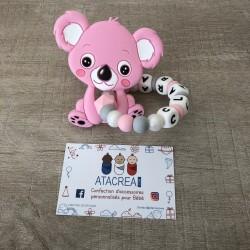 Dentition Koala - Clara